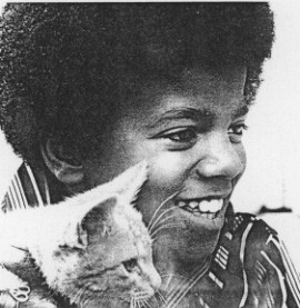 Mike plays with the kitty kitty